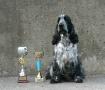 Dumny zdobywca pucharów (Proud cup winner)